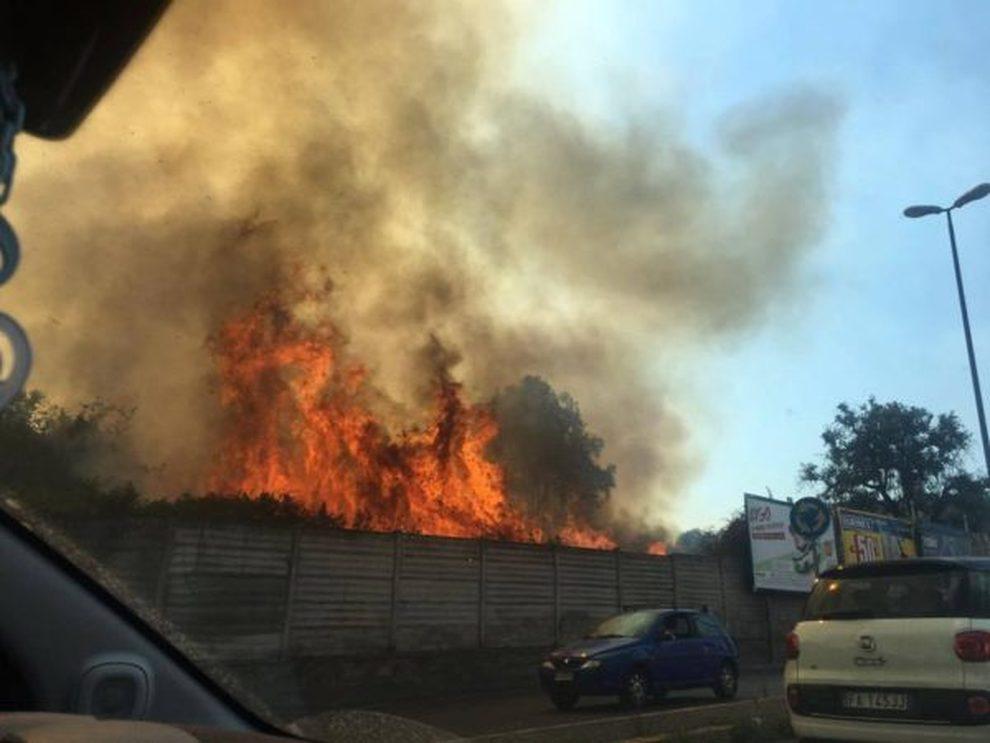 Napoli Incendi A Monte Sant Angelo E Ischia Fiamme