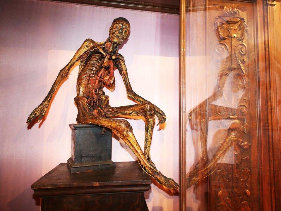 Napoli. Porte aperte al Museo di Anatomia: è tra i più antichi e ...