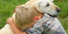 Immagine Bimbo gioca con il cane: prende 11 vermi nell'occhio