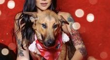 Scatti hot di una presentatrice per salvare i cani di strada: web si infiamma