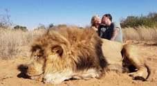 Coppia di cacciatori uccide un leone in cattività, la foto del bacio indigna il web