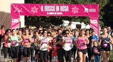 «Il Bosco in Rosa - Corri tra i capolavori» a Capodimonte