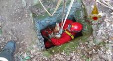 Cane cade in un pozzo di 15 metri: salvato dai vigili del fuoco