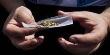 Immagine Cannabis, un solo spinello modifica il cervello