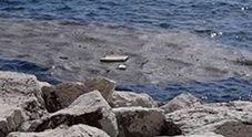 Il mare ancora non bagna Napoli: 120 milioni mai spesi per disinquinare il Golfo