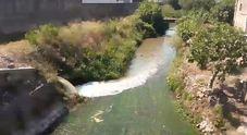 Il fiume Sarno cambia colore: così le acque cristalline diventano marroni