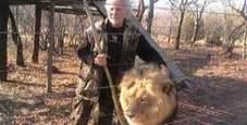 Immagine Leon ucciso dai suoi leoni: la terribile fine di Lion Man