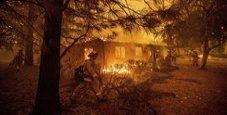 Immagine Dramma California, 71 morti e mille dispersi