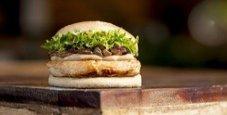 Immagine Deputato si dimette per il furto di un sandwich