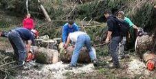 Immagine Puliscono sentieri da alberi, militari fermano volontari