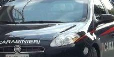 Immagine Super furto a Milano, rubati 300mila euro piumini