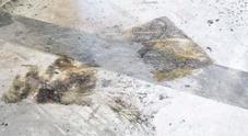 Napoli, Galleria Umberto terra di nessuno: rogo selvaggio sfregia gli antichi marmi