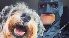 La favola di Chris: si traveste da Batman per salvare animali pronti per essere soppressi