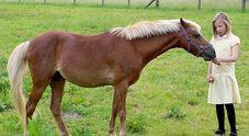 Una bimba di 8 anni, parla per la prima volta nella vita grazie al suo pony