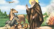 Il fuoco di sant'Antonio per gli animali e la protesta del decumano del mare
