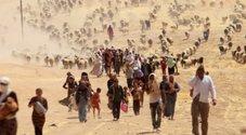 Siria, scoperta una fossa comune: ci sarebbero almeno 200 corpi