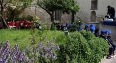 Capri, gli alunni delle primarie alla scoperta dell'olio presso la Certosa di San Giacomo  (Foto Capri Press)