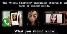 Immagine Muore suicida a undici anni per un gioco macabro online