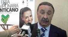Primo sindaco eletto a Venticano, provincia di Avellino: è De Nisco