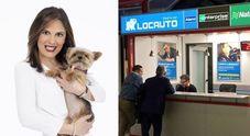 Cani e gatti sulle auto a noleggio  Locauto: «Evitiamo gli abbandoni»