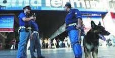 Immagine Rapinavano i turisti con un cane: due arresti