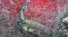 L'ultima scoperta di Pompei: ecco la Domus dei delfini