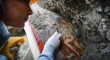 Leda e il Cigno, la nuova meraviglia di Pompei è a luci rosse