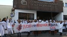 Napoli, protesta il personale Cnr: «No ai tagli alla Ricerca»