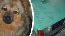 Ritrovato Chicco, il cane scomparso sull'auto rubata