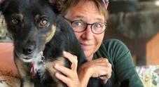 Susanna Tamaro, il cane ucciso da una polpetta avvelenata: «Addio Pimpi, raggio di luce»