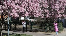 Meteo, ecco il primo weekend di primavera ma lunedì il risveglio sarà gelido