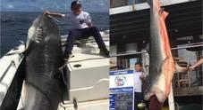 Bimbo di 8 anni pesca uno squalo tigre di 300 kg: scoppia la polemica social
