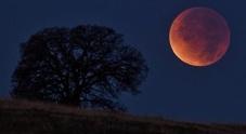 Eclisse di super Luna Rossa domenica notte: ecco come seguirla