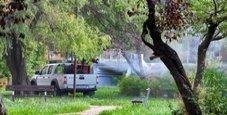 Immagine Febbre del Nilo, quarta vittima in Veneto