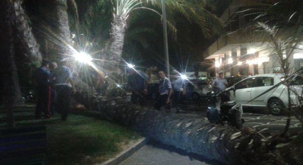 Crolla palma nel centro di Sorrento, scooter distrutti, nessun ferito