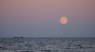 Venerdì sera arriva la luna rosa: perché si chiama così e cosa si vedrà fino a Pasquetta