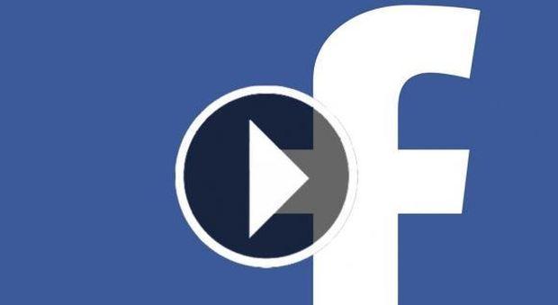 Facebook, attenzione al video sui cani: cliccare sul link costa 5 euro al giorno