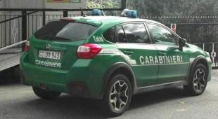 Centinaia di cosmetici sequestrati dai forestali nel Napoletano