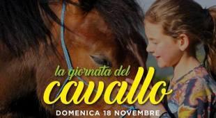 Bambini alla scoperta del cavallo: al Celp una giornata tra curiosità e strigliatura