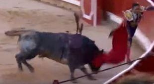 Sangue alla festa di San Fermin, torero incornato e operato d'urgenza
