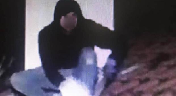 L'appello social: «Questo è il ladro che ha rubato a casa mia, chi lo riconosce?»