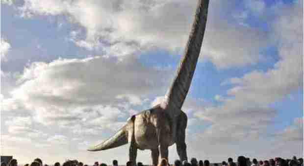 Il dinosauro più grande? È il Titanosauro Patagonico