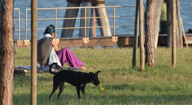 Fuori con il cane in orario di lavoro dipendente comunale - Porta portese lavoro lungo orario ...