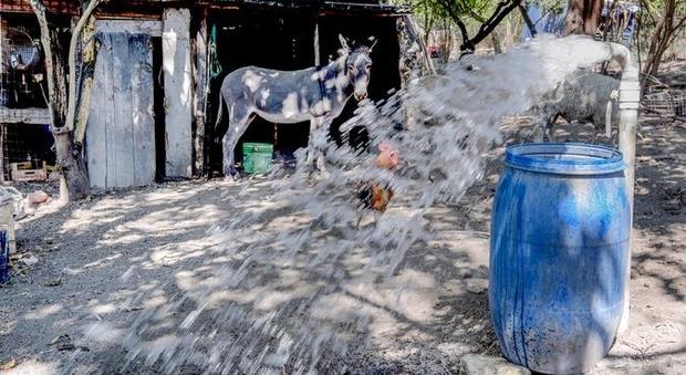 Palma Campania. Pozzi contaminati, scatta lo stop: «Vietato irrigare le coltivazioni»
