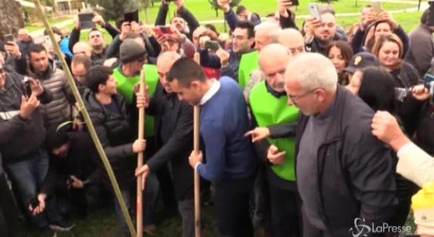 Di Maio pianta un albero a Casoria: «Garantiamo il diritto a respirare ai nostri figli» - Il Mattino