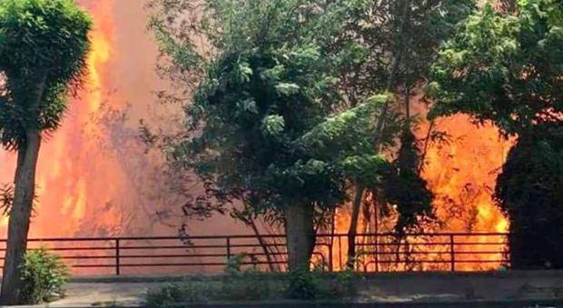 Ora brucia la collina di Posillipo, paura tra la gente   Fotogallery Altro incendio a Monte Sant'Angelo