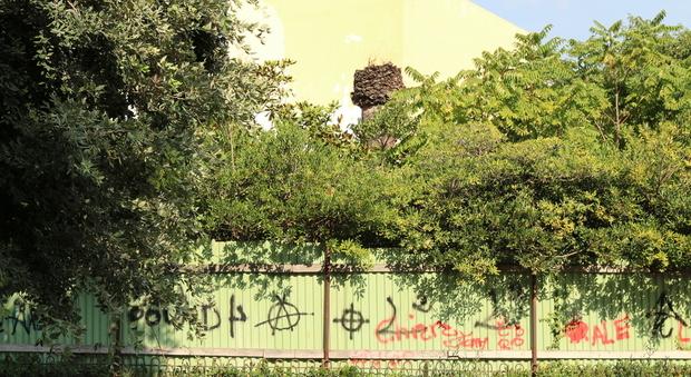 Viaggio nella villa Comunale di Napoli tra degrado e abbandono