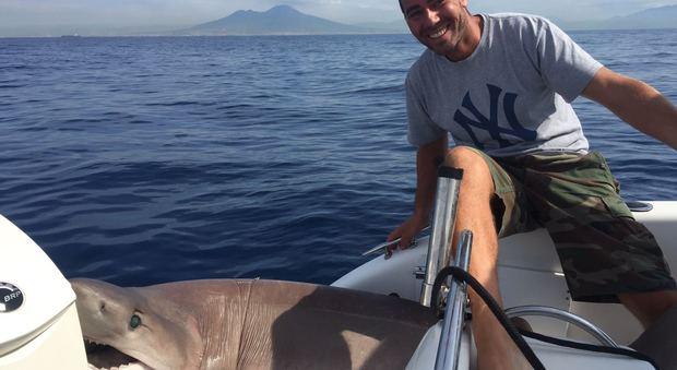 Squalo di quasi tre metri pescato davanti Mergellina | Foto