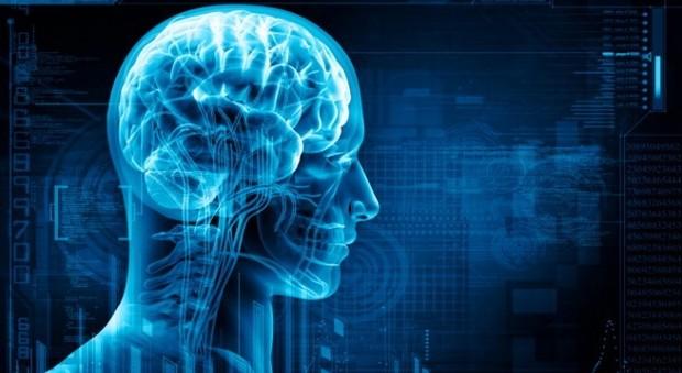 Cervello, apre il più grande laboratorio virtuale: coinvolti 21 centri di ricerca tra Europa e Usa