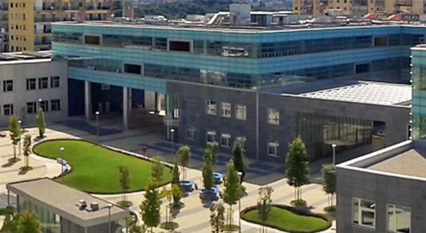 Napoli, inaugura la prima iOS Developer Academy d'Europa